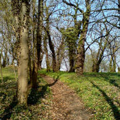 Wege im Schlosspark in Ostrau