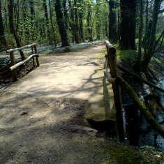 Brücke über kleinen Wasserlauf