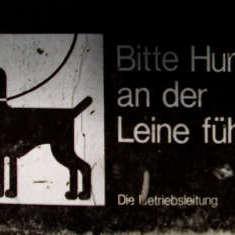 Hundeschild Klinikgelände Gütersloh