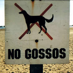 No Gossos