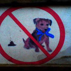 Hundeschild Hasslau